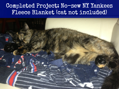 Completed project: Yankees MLB no-sew fleece blanket #12projects12months