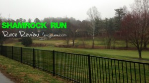 Asheville Shamrock Run 5k (race review)