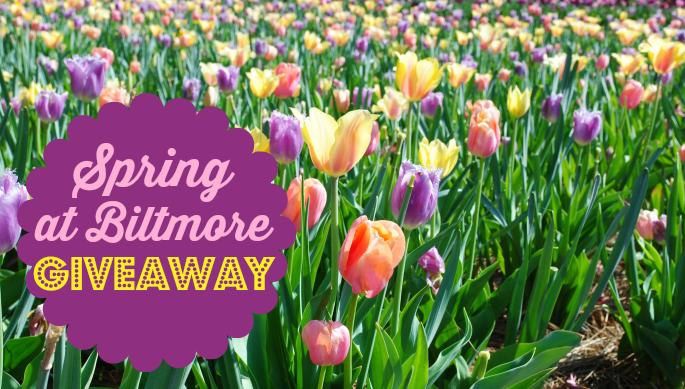 Spring at Biltmore Estate…giveaway time! #BiltmoreBlooms