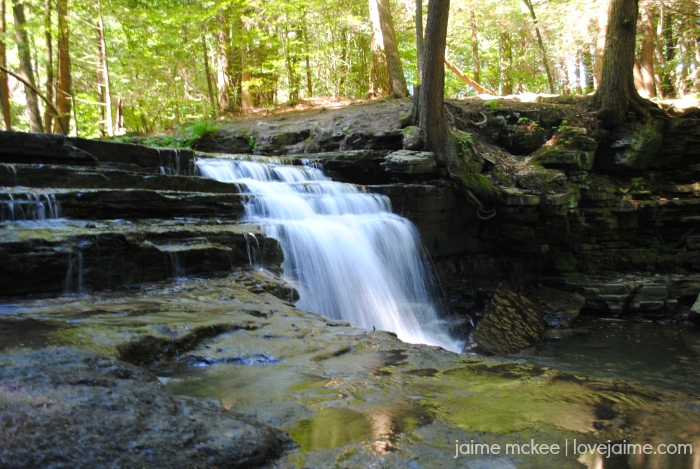 Salt Springs State Park – first family hike! #visitPA #hiking