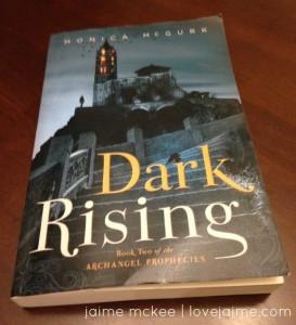 darkrising_1
