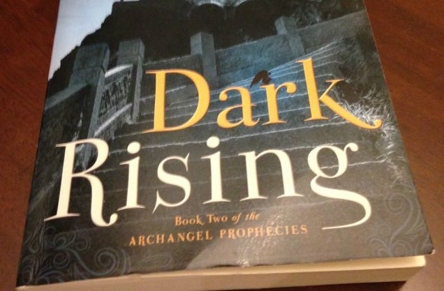What I'm Reading Wednesday: Dark Rising by Monica McGurk #review #book