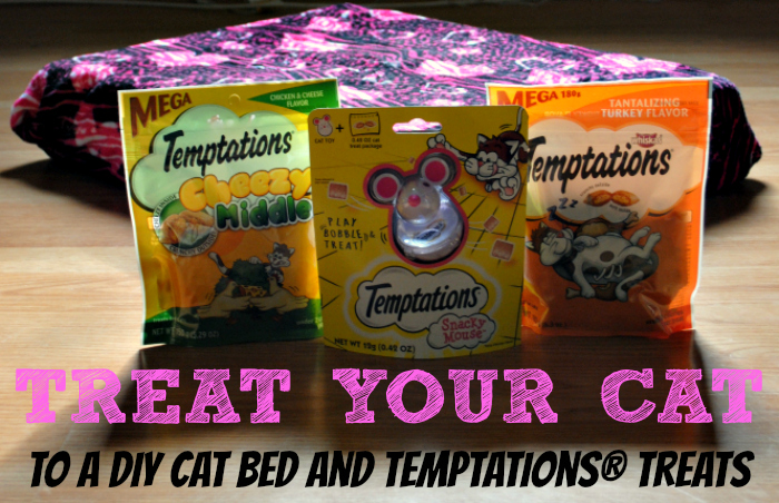 Treat your cat with this DIY cat bed (and treats!) #PAWsomeGifts #ClausAndPaws #ad @walmart