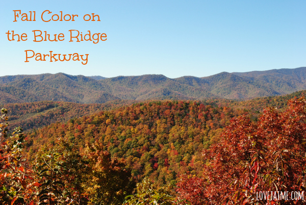 Peak color on the Blue Ridge Parkway