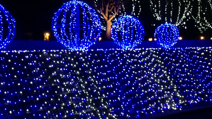 Winter Lights at NC Arboretum #NCWinterLights