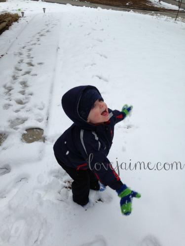 snow022615_5