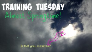 Training Tuesday: Almost spring-like