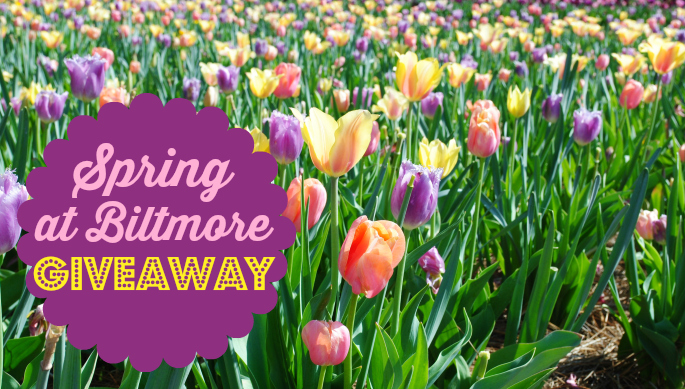 Spring at Biltmore Estate…giveaway time! #BiltmoreBlooms