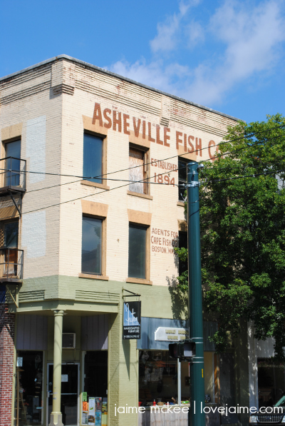 WW_AshevilleMay2015_3