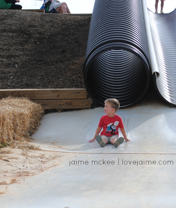 Wordless Wednesday: Eliada Corn Maze #cornmaze #avl #outaboutNC