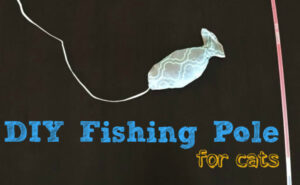 DIY fishing pole toy for cats #IAMSCat #CB #ad