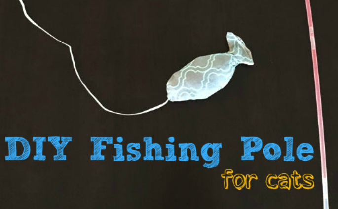 DIY fishing pole toy for cats