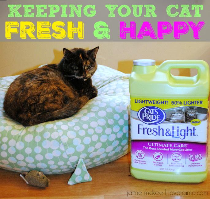 cats-pride-fresh-light