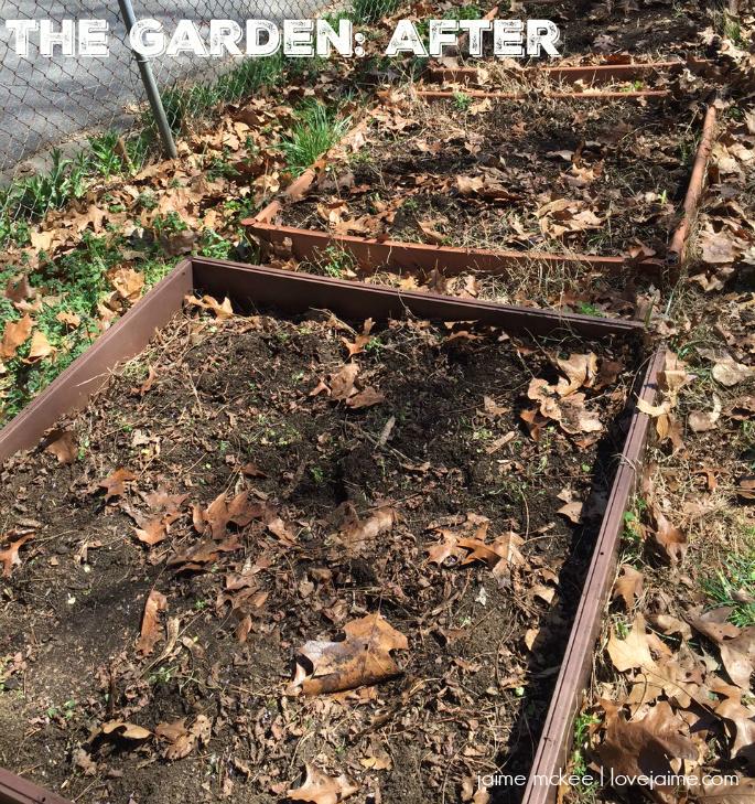 garden-prep-after