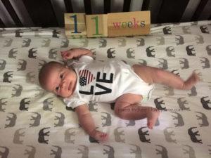 Baby update {week 11}
