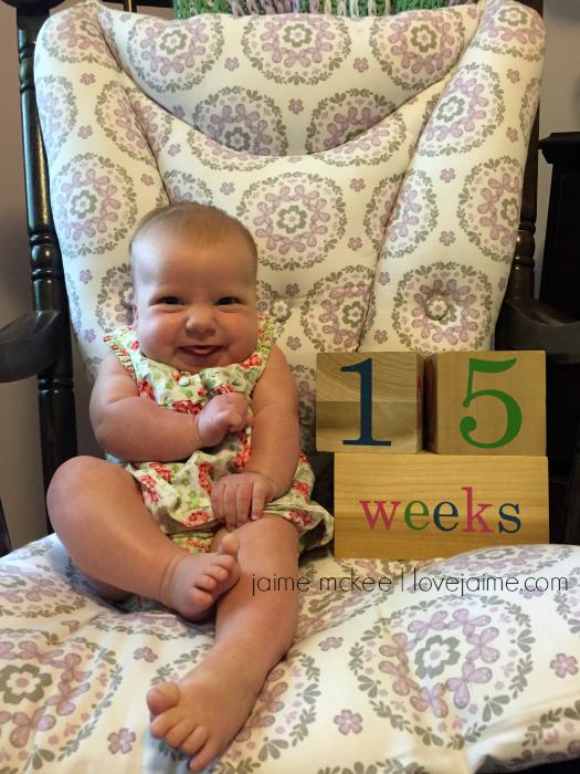 15weeks-1
