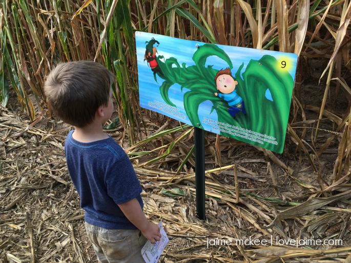 Our annual corn maze visit