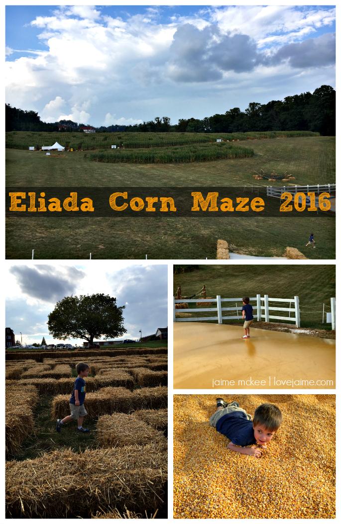 eliada-corn-maze-2016-1