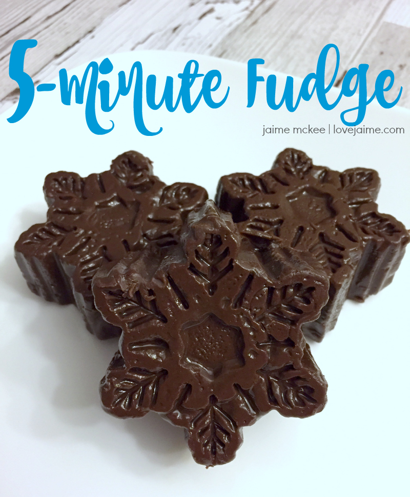 Super Simple Five Minute Fudge Recipe