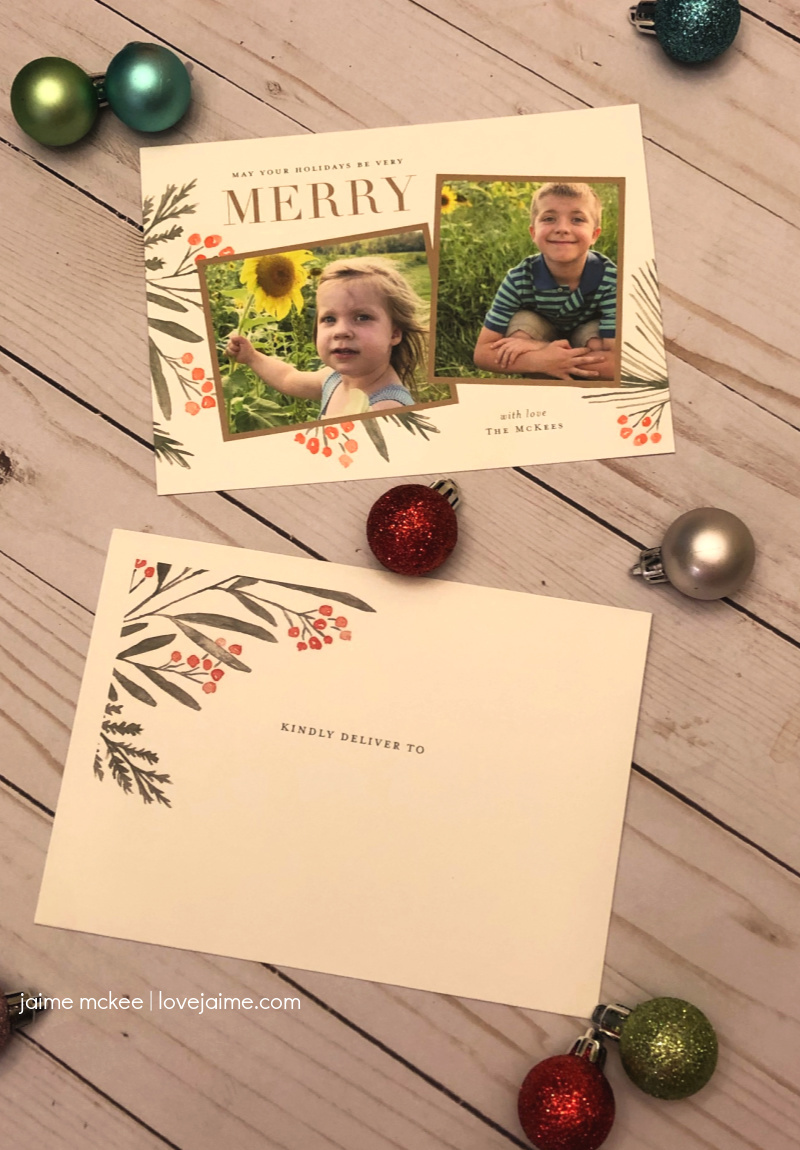 2019 Minted Holiday Cards